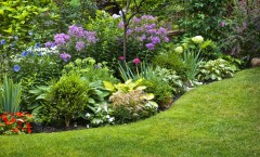 Winter Landscaping To-Do's