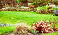 Fall Landscape Ideas