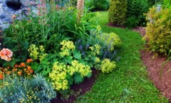 Residential Landscape Management: Your Landscape, Your Vision