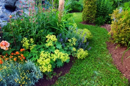 Transitioning Your Landscaping From Summer To Fall