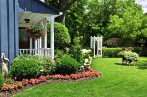 Green Landscaping Ideas