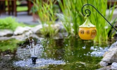 8 Summer Landscaping Ideas to Revamp your Yard