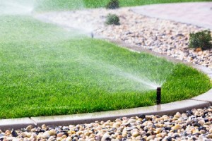 Keep lawn watered | Summer Lawn and Landscaping