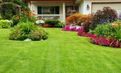 Summer Lawn and Landscaping Tips: Keep Your Yard Looking Great all Season