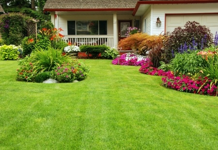 Summer Lawn and Landscaping Tips