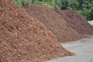 mulch | Mansell Landscape Management