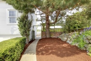 mulch   Mansell Landscape Management
