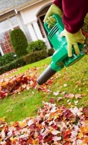 Leaf Blower   Mansell Landscape Management