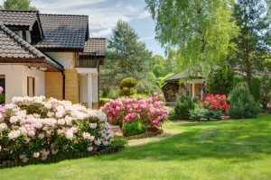 how to transition your yard from winter to spring
