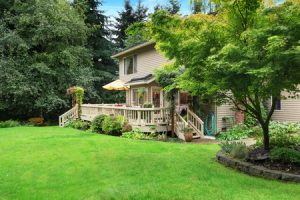 landscaping tips to reduce energy costs