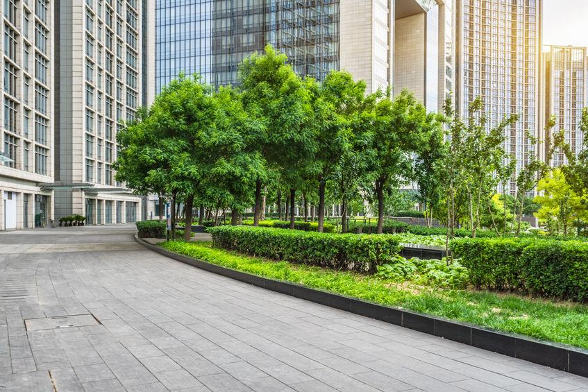 Commercial Landscape Company Mansell Landscape Management