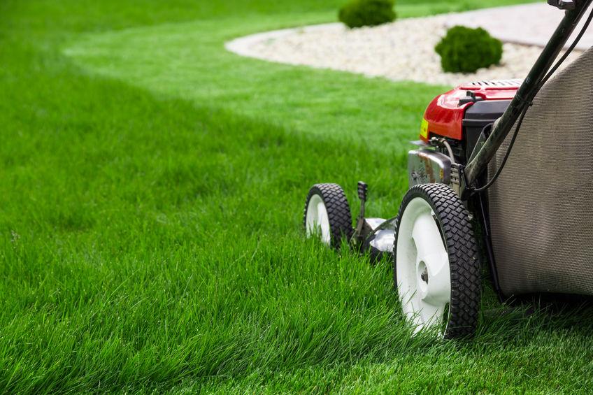 Service Lawn Mower   Mansell Landscape Management