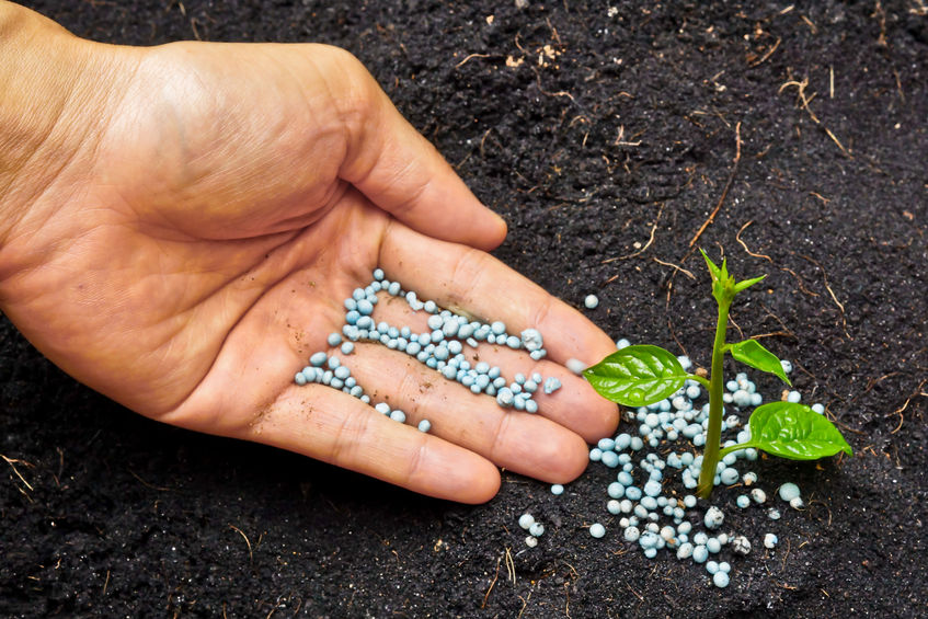 Fertilizer | Fall Landscape