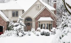 How to Protect Your Landscape This Winter