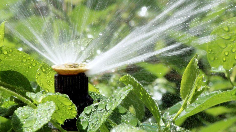 Irrigation System Maintenance   Mansell Landscape Management