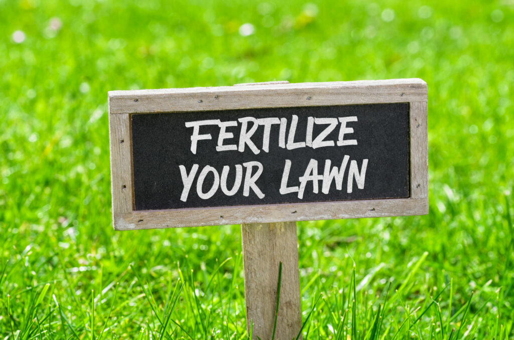 Fertilize Your Grass In Winter | Mansell Landscape Management
