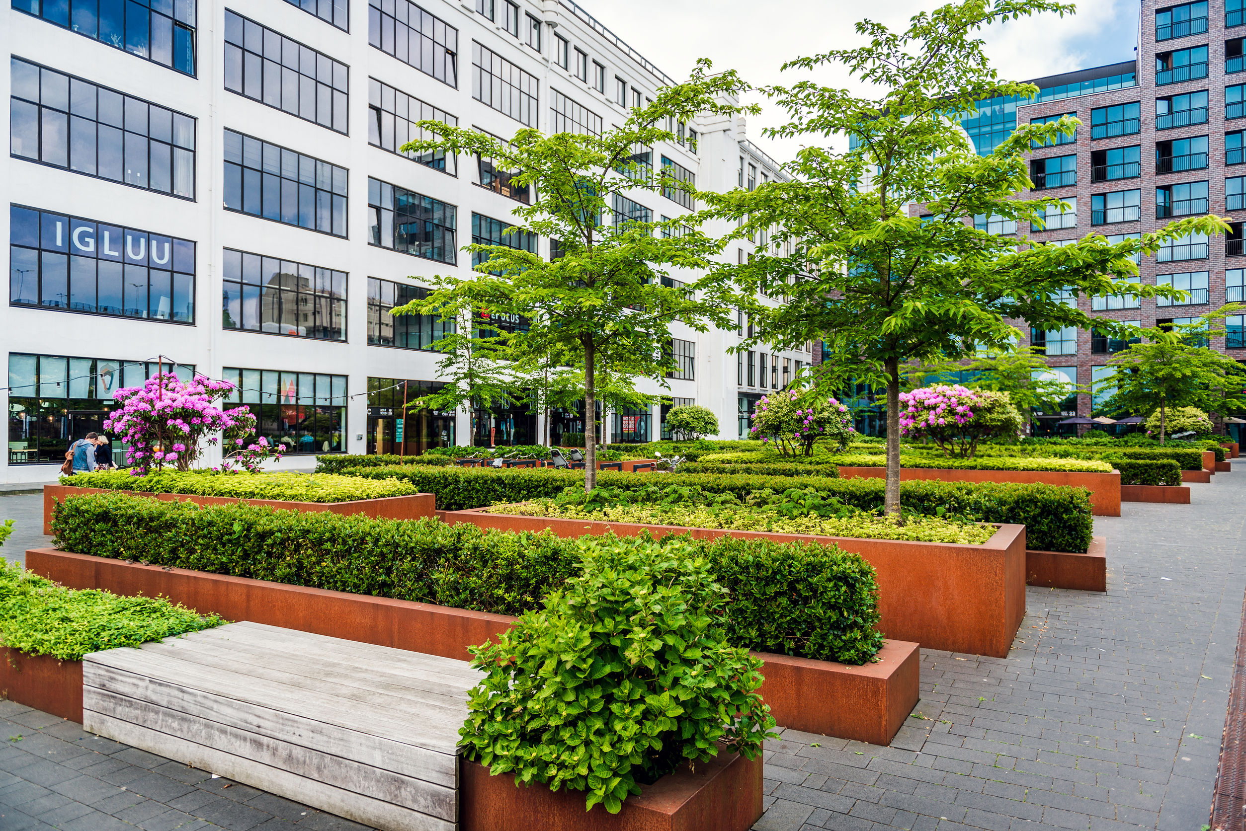 Commercial Landscape for your business | Mansell Landscape Management