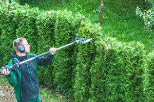 Hire A Professional Landscaper | Mansell Landscape Management
