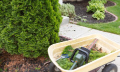 Winter Landscaping Tips For Your Home