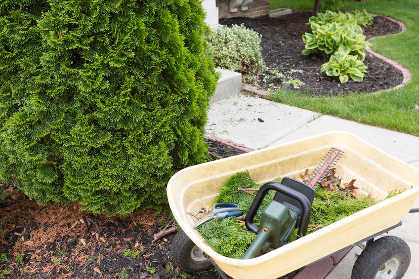 Winter Landscaping For Your Home | Mansell Landscape Management