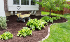 Benefits Of Mulch For Your Yard