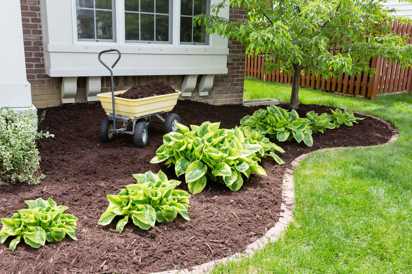 Benefits Of Mulch for your yard | Mansell Landscape