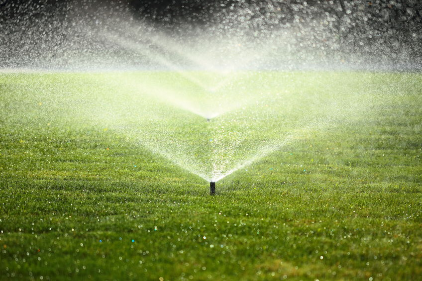 how often should you water your lawn | Mansell Landscape