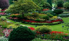 Spring Landscape Tips For Your Property