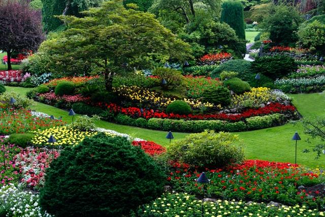 Spring landscape Tips | Mansell Landscape