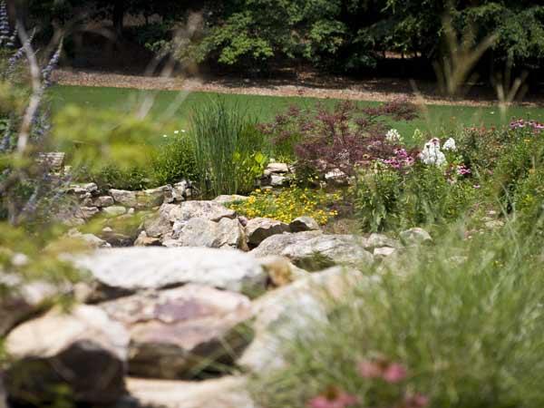Landscape Design & Installation Image: Mansell-25.jpg